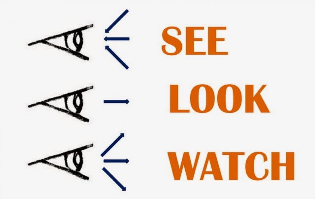 Phân biệt See Look Watch chuẩn xác nhất